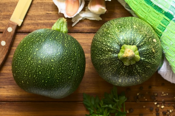 Zucchini F1 Eight Ball